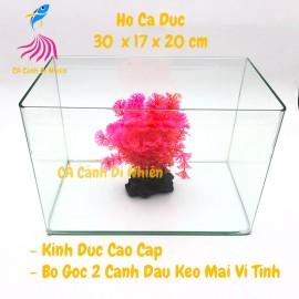 Hồ kính đúc nuôi cá thủy sinh 2 cạnh uốn cong bể size 30x17x20 cm