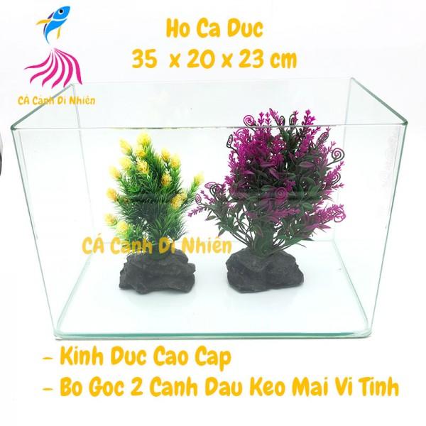 Hồ kính đúc nuôi cá thủy sinh 2 cạnh uốn cong bể size 35x20x23 cm