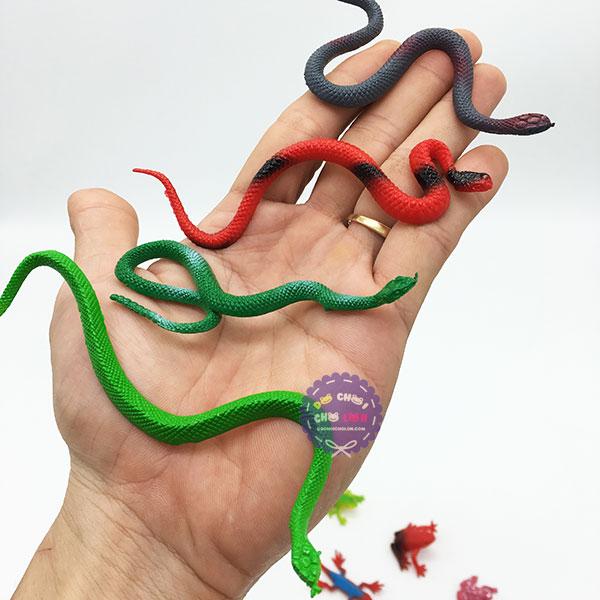 Bộ đồ chơi 15 loài bò sát mini bằng nhựa Reptiles